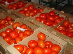 hranenie_tomatov